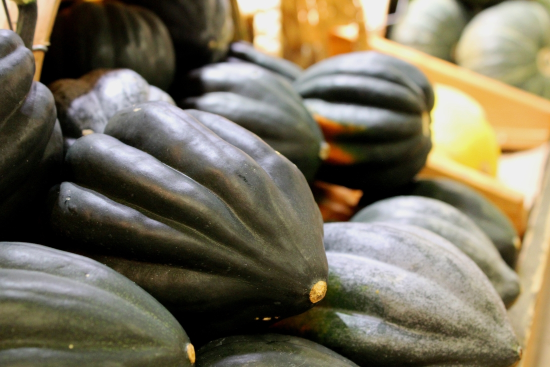Canva - Acorn Squash, Autumn, Vegetable, Food, Harvest.jpg